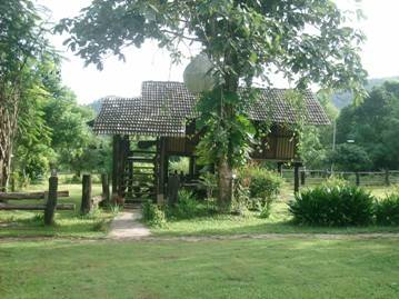 Nature Lodge, Chiang Mai, Thailand, where to stay and live in a city in Chiang Mai