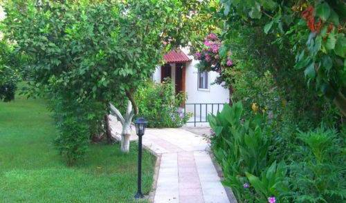 Blue Paradise Pension -  Cirali, cheap bed and breakfast 7 photos