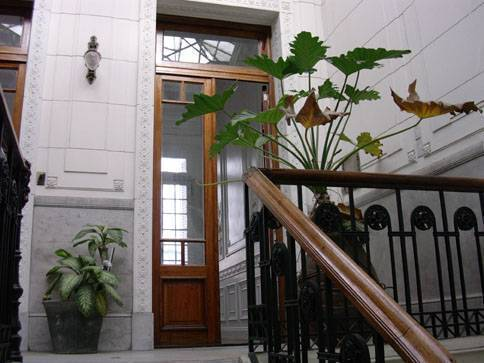 Tanguera Hostel, Buenos Aires, Argentina, Argentina hostels and hotels