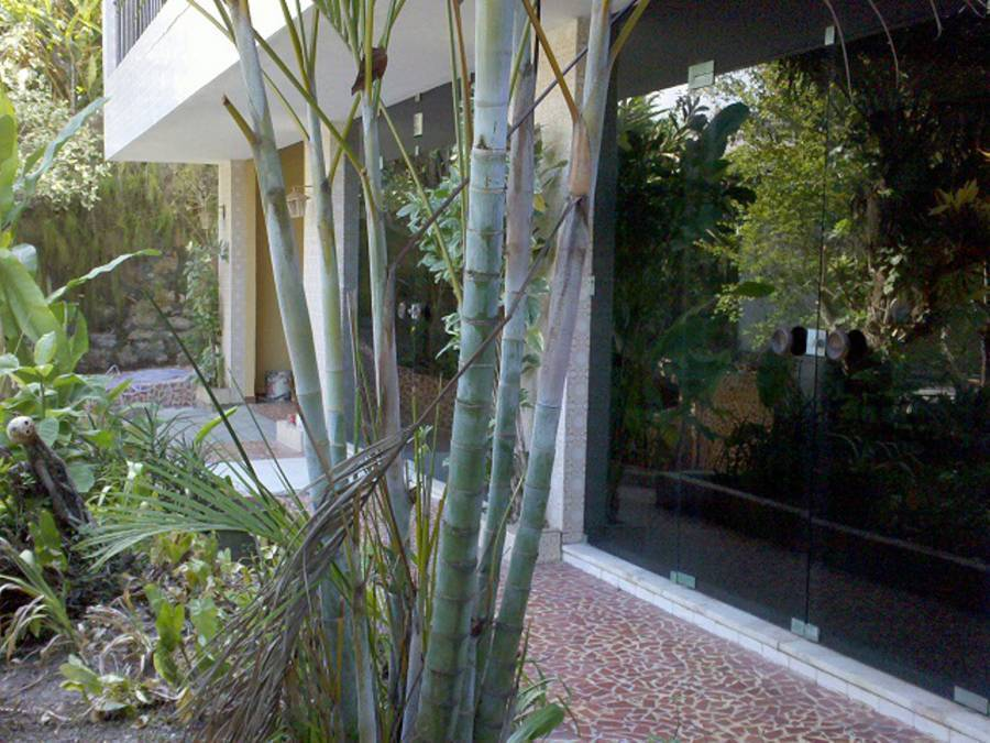 Charitas Inn, Niteroi, Brazil, Brazil bed and breakfasts and hotels