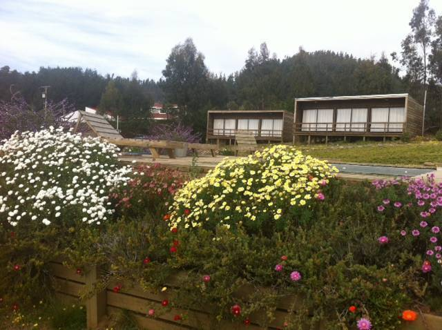 Cabanas Lovel-Van, Curanipe, Chile, how to spend a holiday vacation in a hostel in Curanipe