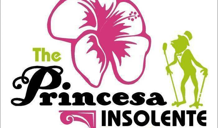 The Princesa Insolente Hostel - Search available rooms and beds for hostel and hotel reservations in Santiago 23 photos