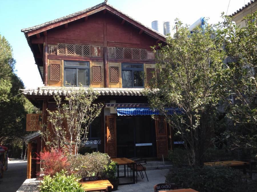 Blue Gecko - Sleepyfish Suites, Dali, China, China hostels and hotels