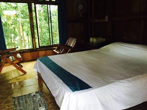Hotel del Bosque, Rio Cuarto, Costa Rica, Costa Rica bed and breakfasts and hotels