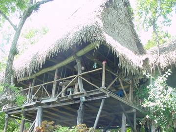 Tree Tops B and B Inn, San Juanillo, Costa Rica, find me hostels and places to eat in San Juanillo
