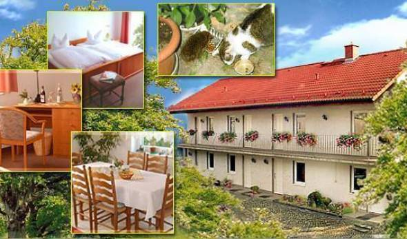 Landhaus Fleischhauer -  Lutzen, top tourist destinations and bed & breakfasts 13 photos