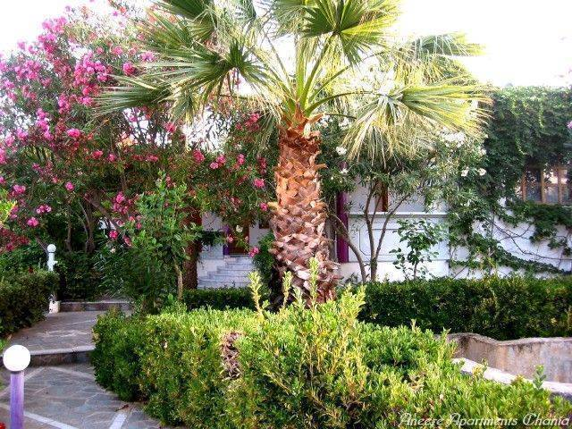 Aneexe Apartments Chania, Chania, Greece, Greece hostels and hotels