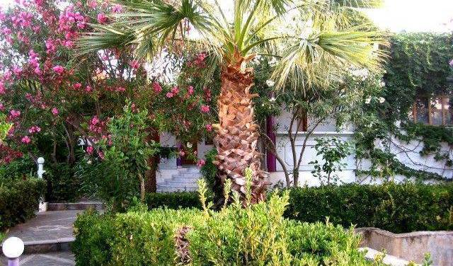 Aneexe Apartments Chania - Search for free rooms and guaranteed low rates in Chania 14 photos
