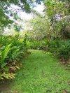 Hana Maui Botanical Gardens BnB, Hana, Hawaii, Krevet & Doručak za sve proračune u Hana