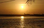 Beach And Lake Resort, Thiruvananthapuram, India, India bed and breakfasts and hotels