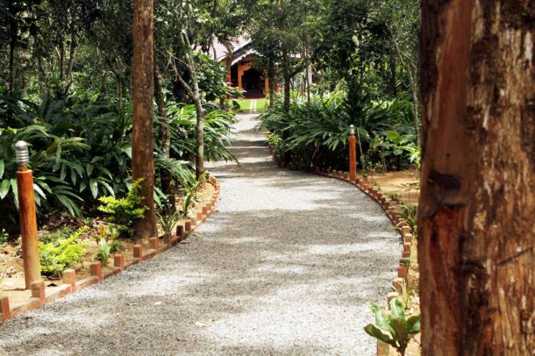 Canaane Estate, Idukki, India, bed & breakfasts near tours and celebrities homes in Idukki
