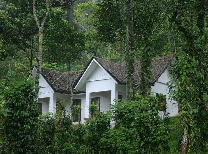 Cardamom Club, Thekkady, India, India bed and breakfasts and hotels