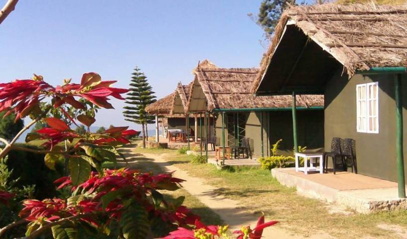 Anaerangal Camp - Get cheap hostel rates and check availability in Munnar 21 photos