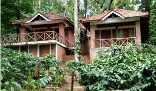 Jungle Retreat Wayanad - Get cheap hostel rates and check availability in Wayanad, Wayanad, India hostels and hotels 4 photos