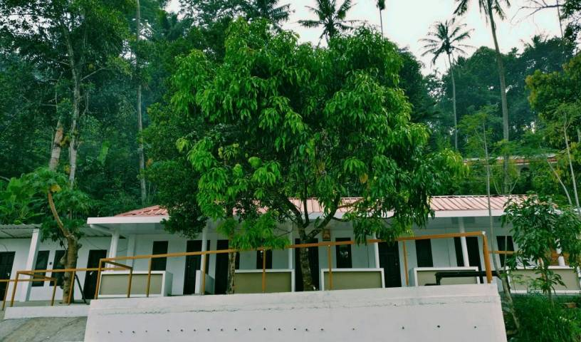 M3 Homes - Get cheap hostel rates and check availability in Munnar 61 photos