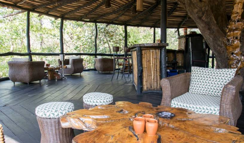 Pugdundee Safaris - Tree House Hideaway - Get cheap hostel rates and check availability in Tala 32 photos