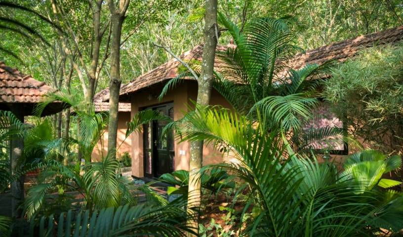 Vastuka Ayurveda Yoga Retreat - Search available rooms and beds for hostel and hotel reservations in Nagercoil 7 photos
