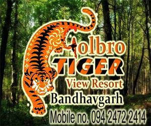 Golbro Tiger View Resort, Tala, India, read reviews from customers who stayed at your bed & breakfast in Tala