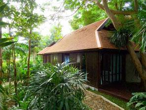 Jungle Retreat Wayanad, Wayanad, India, bed & breakfasts for the festivals in Wayanad