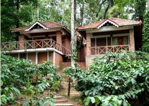 Jungle Retreat Wayanad, Wayanad, India, India bed and breakfasts and hotels