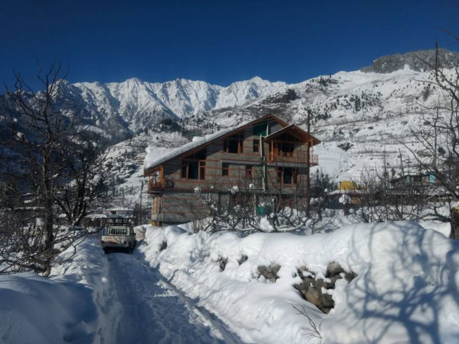 Peak and Snow Cottage, Manali, India, India bed and breakfasts and hotels