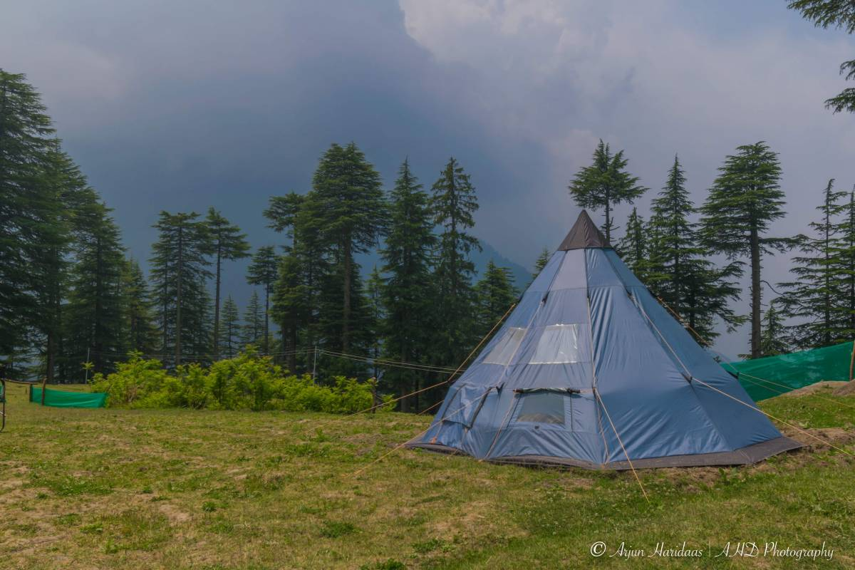 Travelosic Forest Campsite, Manali, India, reliable, trustworthy, secure, reserve confidently with BedBreakfastTraveler.com in Manali