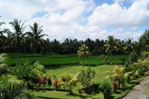 Bhanuswari Resort, Banjar Tengkulak Kelod, Indonesia, great holiday travel deals in Banjar Tengkulak Kelod