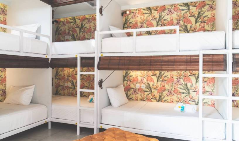 Socialista Lifestyle Hostel - Get cheap hostel rates and check availability in Seminyak 17 photos