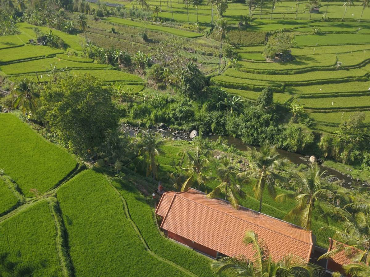 Lotus Guesthouse Sudaji, Denpasar, Indonesia, Indonesia bed and breakfasts and hotels