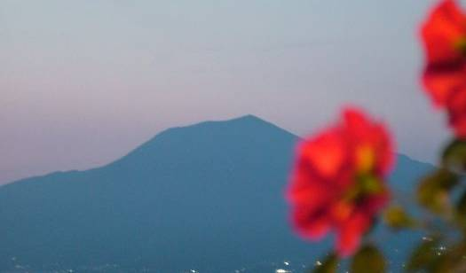 Astoria Vico Hotel -  Vico Equense, read reviews from customers who stayed at your bed & breakfast in Meta, Italy 14 photos