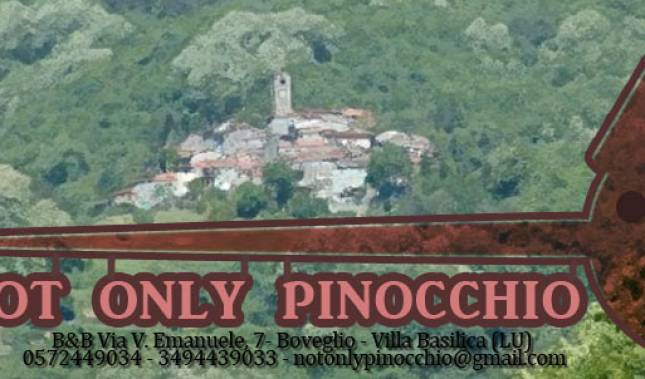 BnB Not only Pinocchio - Search for free rooms and guaranteed low rates in Lucca 12 photos
