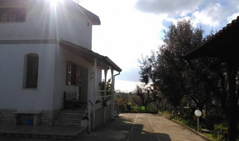 Nero Buono, youth hostel 15 photos