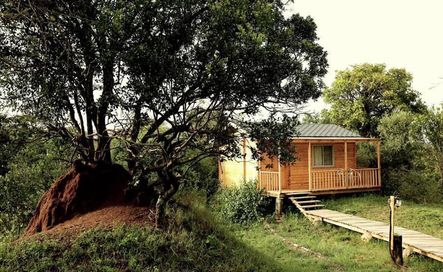 Jambo Mara Safari Lodge, Narok, Kenya, Kenya bed and breakfasts and hotels