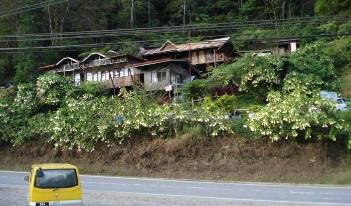 Mountain Resthouse 5 photos