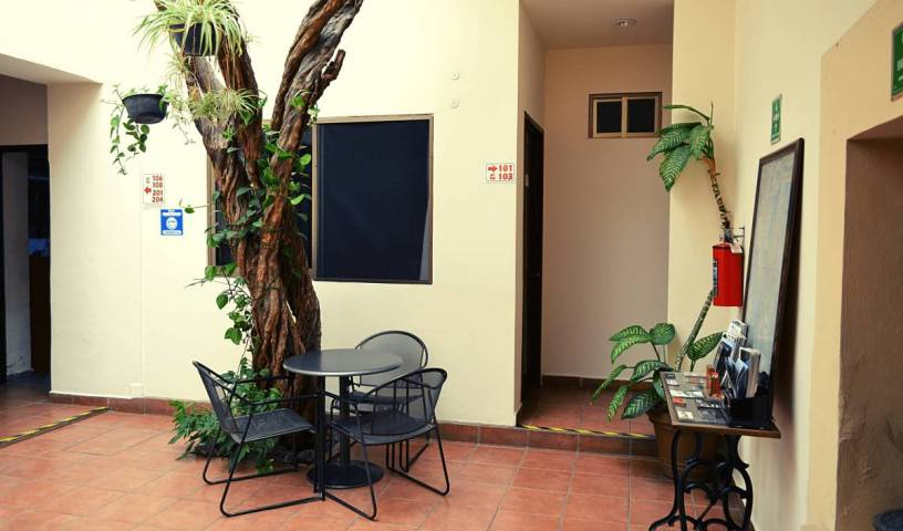 Hostel Don Nino - Search for free rooms and guaranteed low rates in Oaxaca de Juarez 9 photos