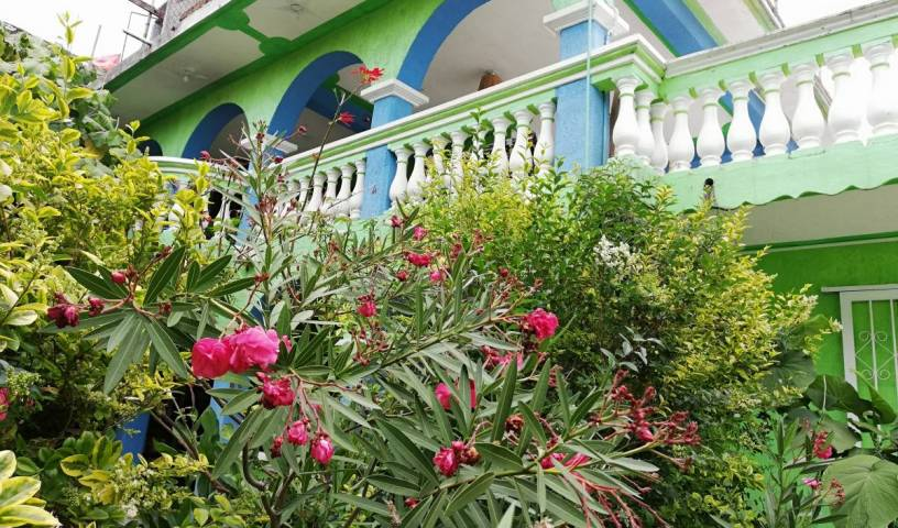 Iguana Hostel - Search available rooms and beds for hostel and hotel reservations in San Cristobal de Las Casas, cheap hostels 7 photos