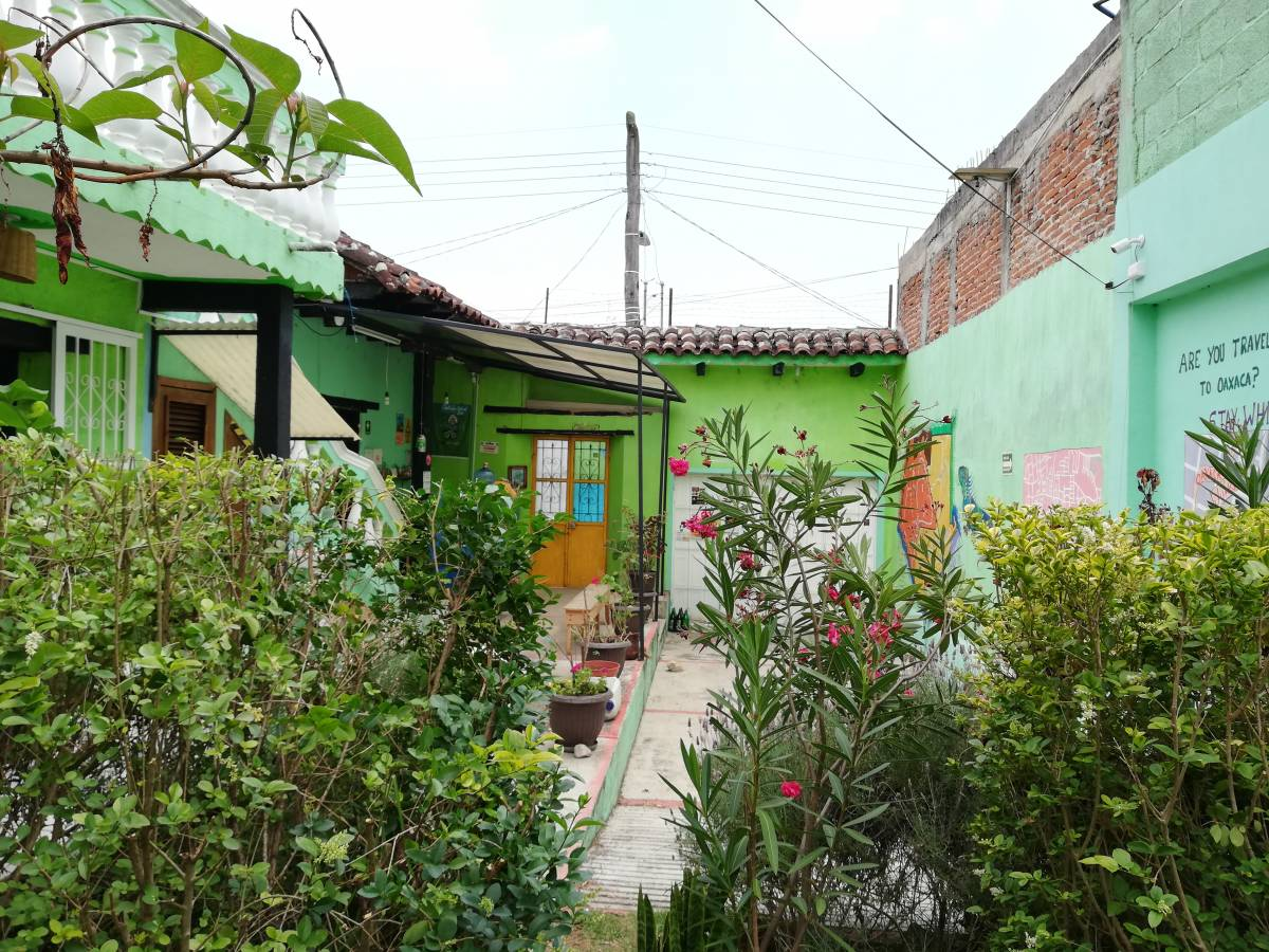 Iguana Hostel, San Cristobal de Las Casas, Mexico, youth hostels in historic towns in San Cristobal de Las Casas
