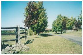 Country Host Bed And Breakfast, Orangeville, Ontario, Ontario hostels and hotels