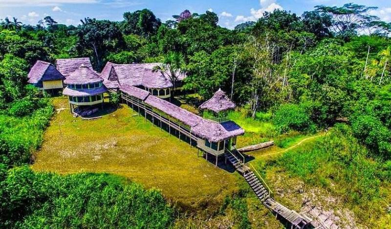 Amazon Jaguar Tour - Search for free rooms and guaranteed low rates in Iquitos 34 photos