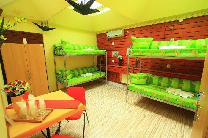 City Center Hostel, Cluj-Napoca - Kolozsvar, Romania, Rejser grøn, verdens bedste miljøvenlige vandrerhjem i Cluj-Napoca - Kolozsvar