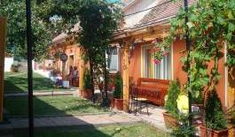 Bassen Pension -  Bazna, experience living like a local, when staying at a bed & breakfast 19 photos