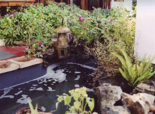 Crane's Nest Guest House, Pretoria, South Africa, Сельская кровать & Завтраки и отели в Pretoria