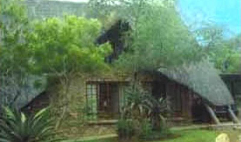 Fish Eagles Nest - Search available rooms and beds for hostel and hotel reservations in Marloth Park 24 photos
