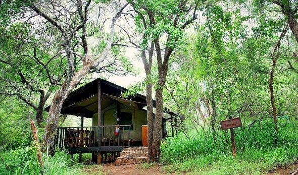 Tholo Tented Camp - Search available rooms and beds for hostel and hotel reservations in Lydenburg 12 photos