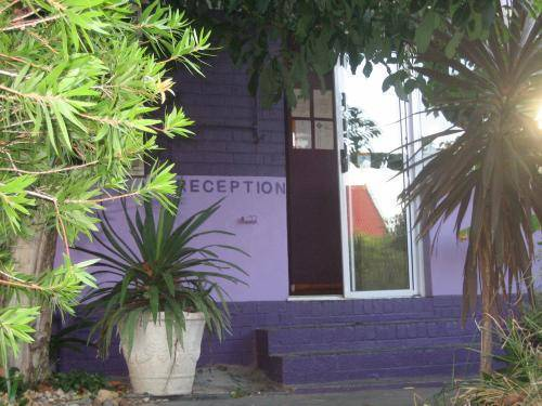 Deco Lodge, Cape Town, South Africa, youth hostels and backpackers for mingling with locals in Cape Town