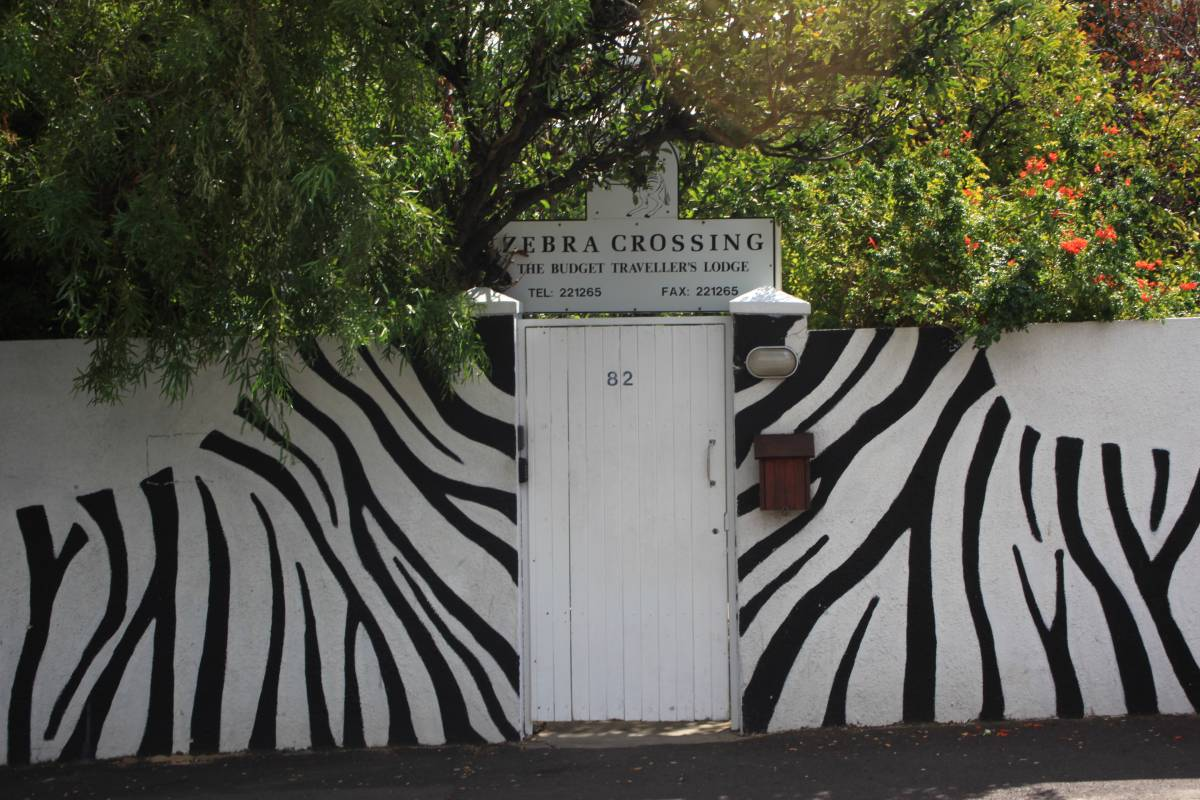 Zebra Crossing, Cape Town, South Africa, South Africa hostels and hotels