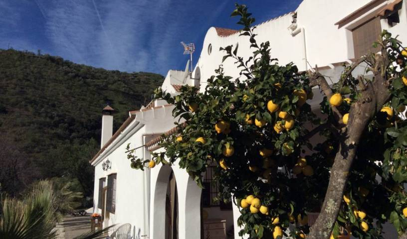 The House Of Oranges, instant online reservations in Andalucía (Andalusia), Spain 13 photos