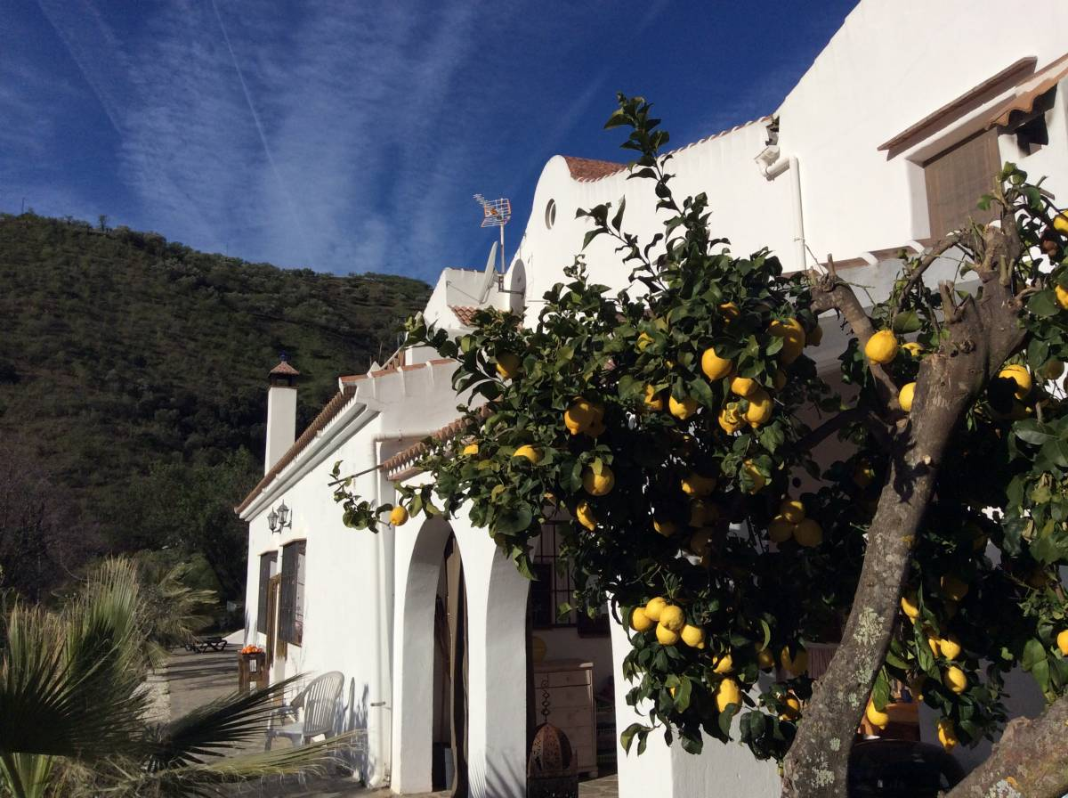 The House Of Oranges, Sedella, Spain, Spain bed and breakfasts and hotels