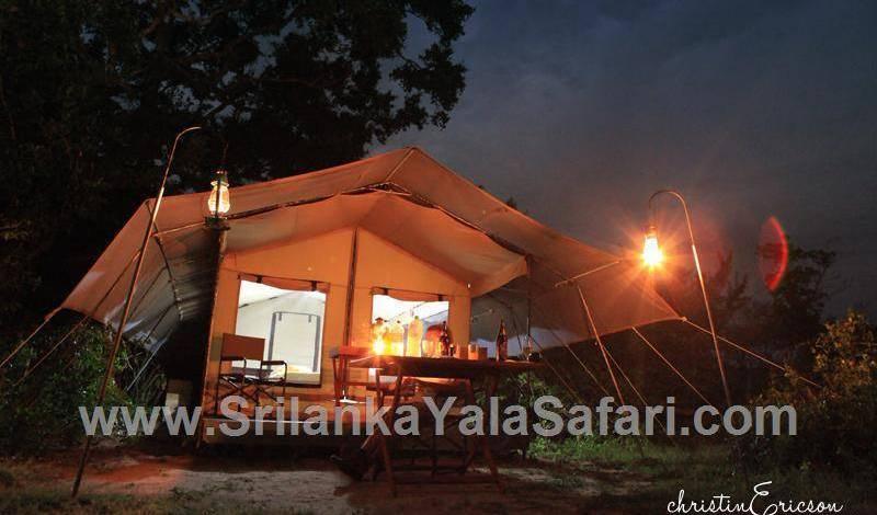 Yala Safari Camping - Get cheap hostel rates and check availability in Tissamaharama 31 photos