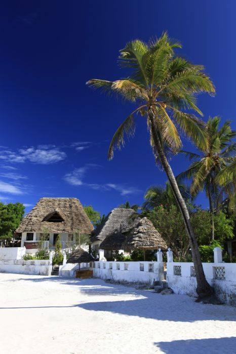 Red Monkey Lodge, Jambiani, Tanzania, Tanzania vandrarhem och hotell